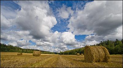 great_depth_of_field_in_landscape_photo.jpg