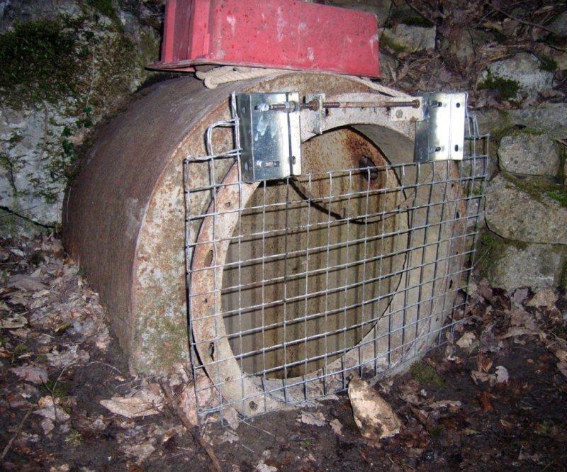 Caving-Nadolig-Lid-grill.jpg
